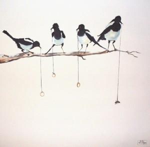 m_Magpies