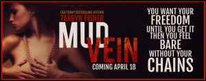 MUD VEIN BANNER FOR BLOG AND WEB